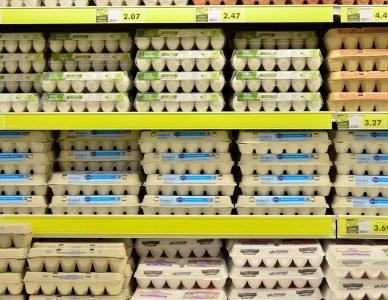 Wymagania higieniczne dla central wentylacyjnych w przemyśle spożywczym