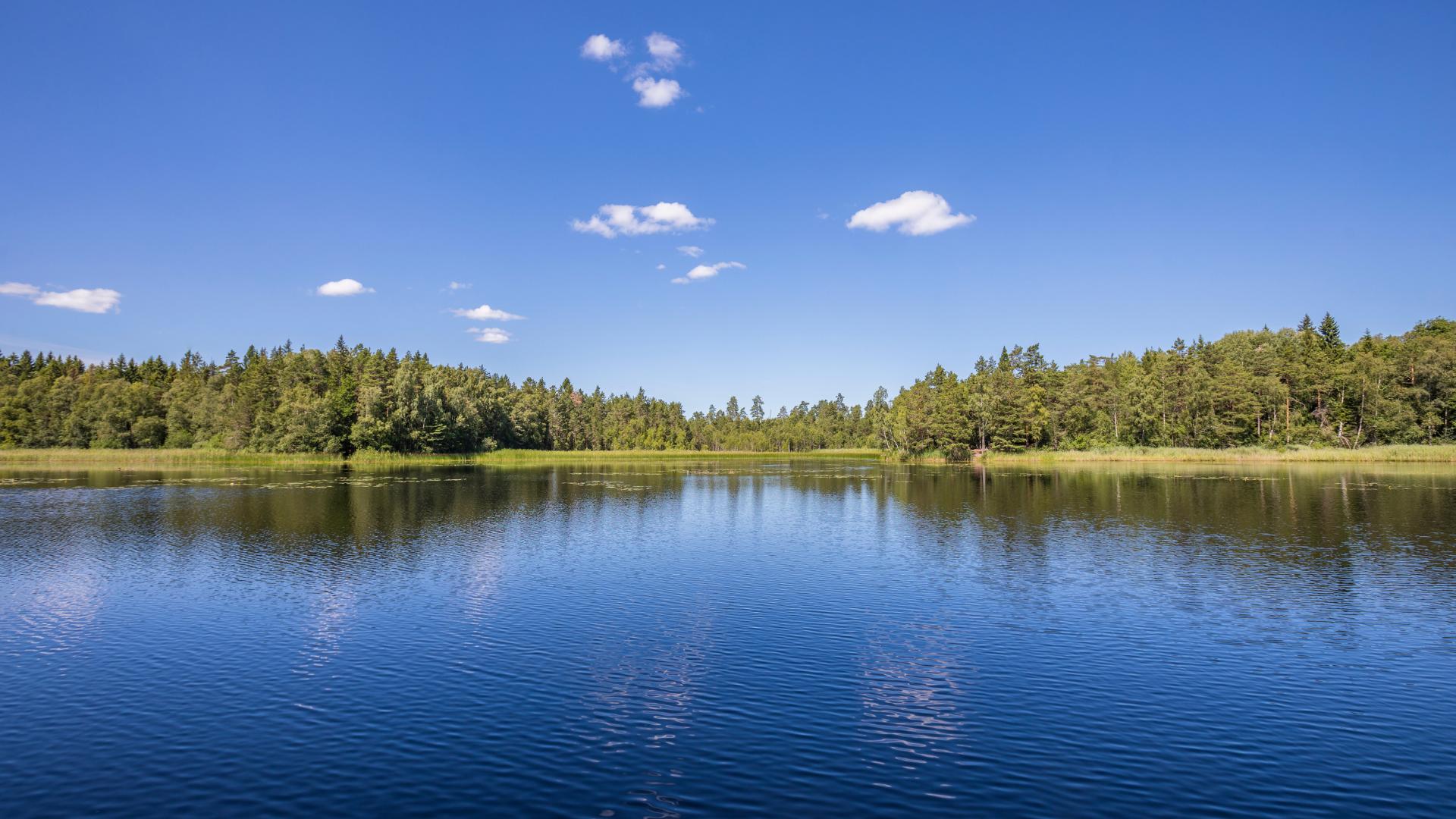 Analiza ryzyka ujęcia wody – o co chodzi?