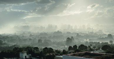 Webinarium: Rozmowy o Czystym Powietrzu: Jak szybko pokonać niską emisję?